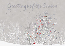 Touch of Red Holiday Cards
